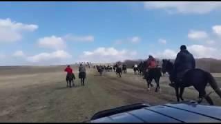КЧР Конный пробег 13 03 2016 год