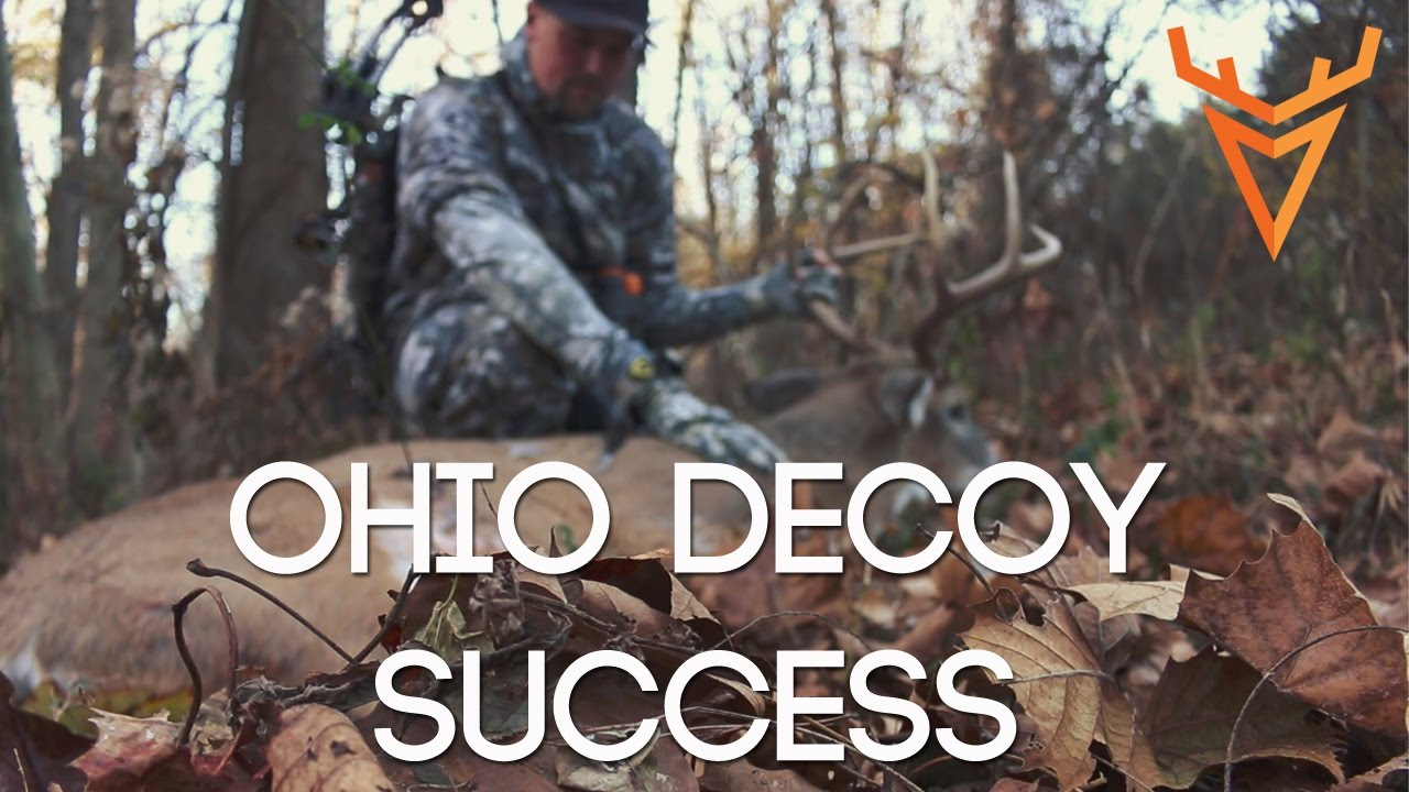 Wired To Hunt 2016 #2: My First Ohio Buck With A Decoy - YouTube