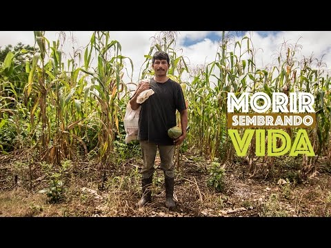 MORIR SEMBRANDO VIDA - 2015 (DOCUMENTAL COMPLETO)