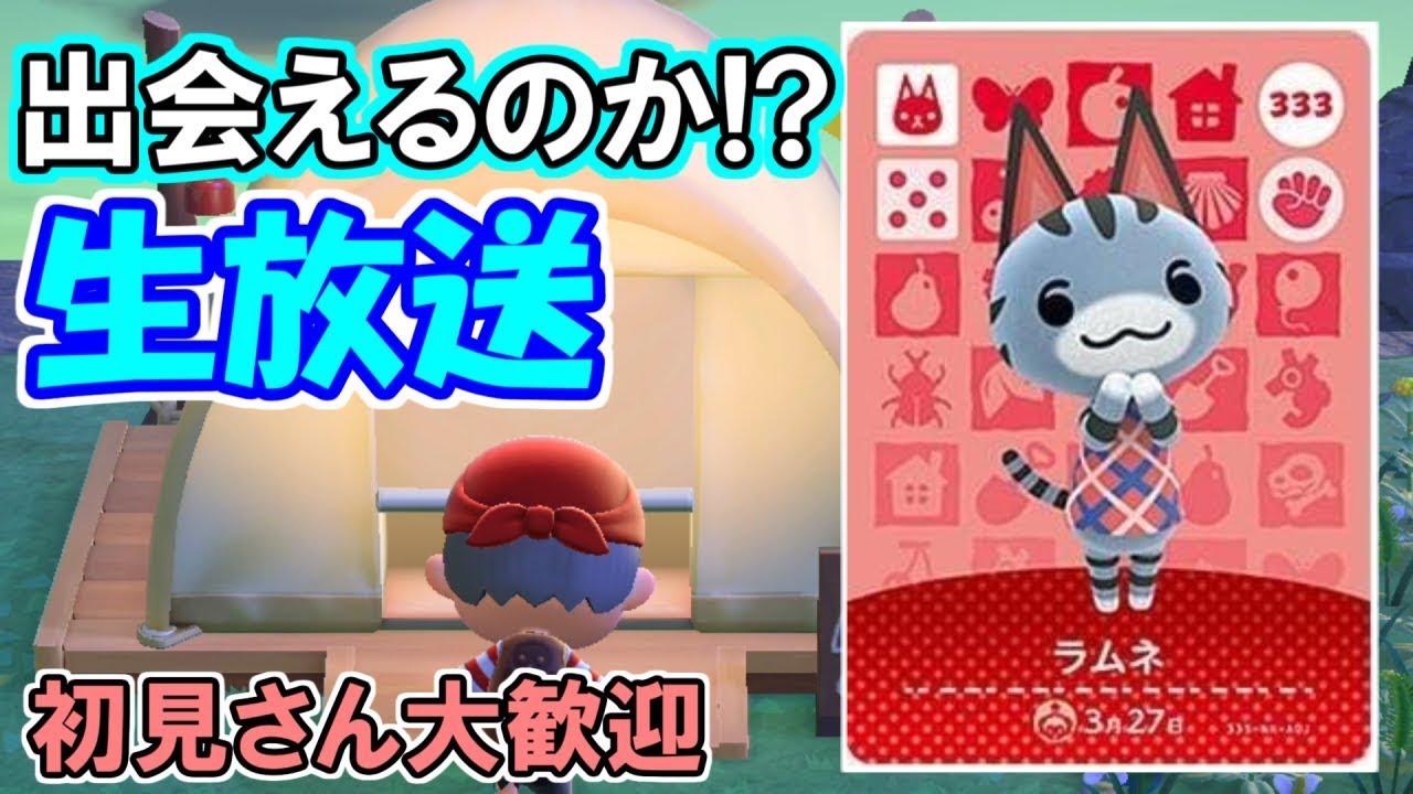 【あつ森生放送】キャンプサイトでラムネちゃんに会うんだああ!!【概要欄必読】