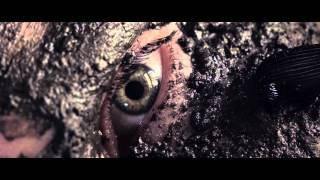 Majical Cloudz - Bugs Don't Buzz