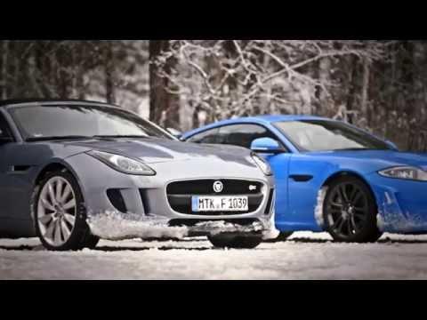 Jaguar Alive on Ice