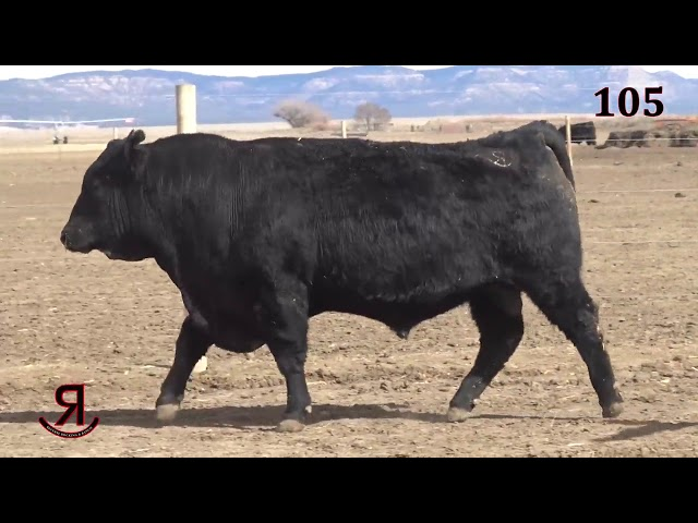 Reverse Rocking R Ranch Lot 105