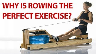 WaterRower Natural Rowing Machine with S4 Monitor | 207-245-1999 | Farmingdale, Maine