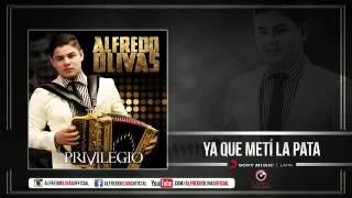 Alfredito Olivas Ya Que Meti La Pata (Estudio 2015