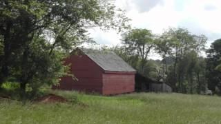 Dulcimer Gals - Shenandoah