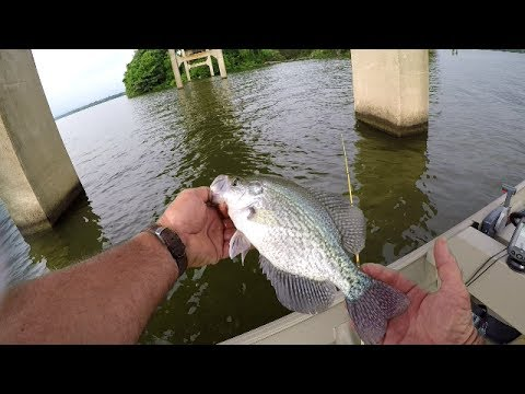 How To Locate Crappie In The Summer