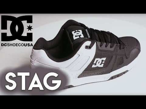2019 DC Stag Skate Shoes
