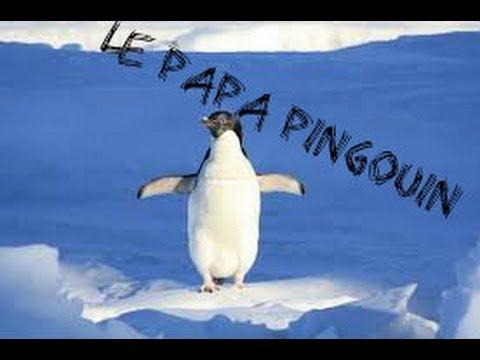 le papa pingouin le papa pingouin avec skreffy youtube. Black Bedroom Furniture Sets. Home Design Ideas