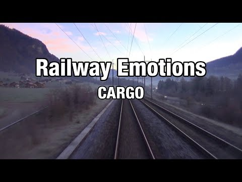 From south to north (Cargo Cab Ride Switzerland | Brig - Basel Part 1)