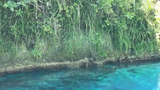 Hinatuan Enchanted River, Philippines