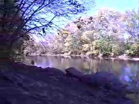 Salamonie River below Hanging Rock