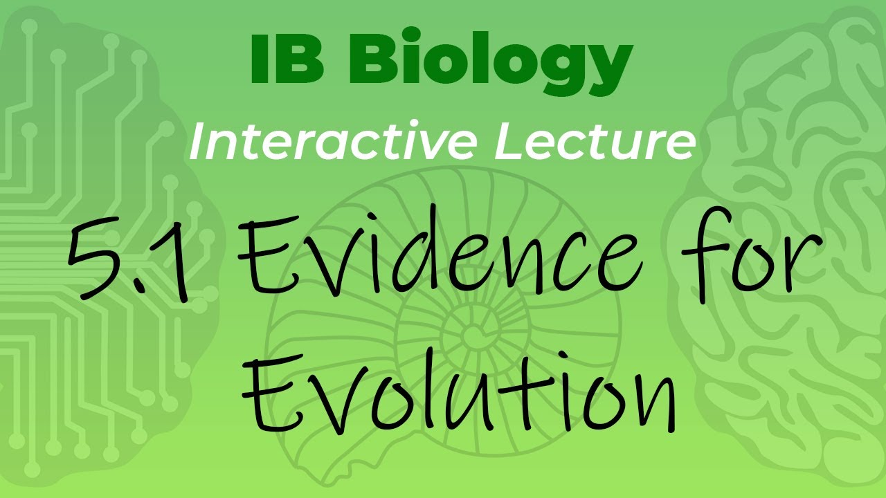 Mr. Leonard\'s IB Biology Video Course - 5.1 Evidence for Evolution ...