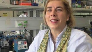 Заживляющий раны наногель представили сингапурские учёные(новости) http://9kommentariev.ru/(http://www.epochtimes.ru Исследователи из Сингапура разрабатывают новый вид основанного на пептидах гидрогеля, котор..., 2014-07-21T11:02:51.000Z)