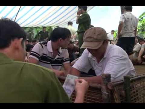 Bat Truong Ga (Vinh Huu Go Cong Tay TG) part 2