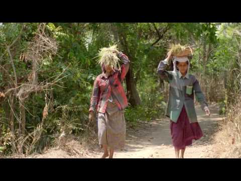 Documentary on Navara Rice by European Union