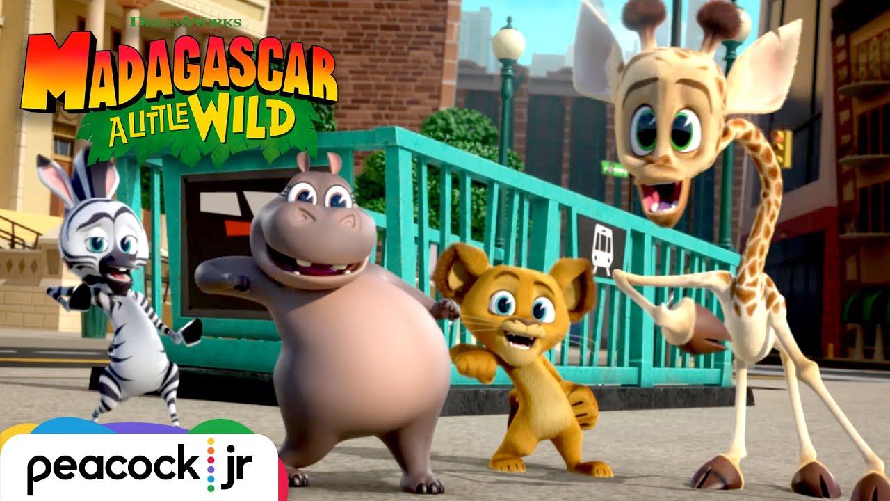 MADAGASCAR A LITTLE WILD | Season 2 Trailer