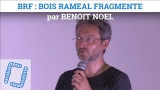 Régénérer un sol avec du BRF - Benoit NOEL