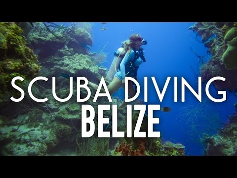 The Blonde Abroad Scuba Dives The Blue Hole, Belize