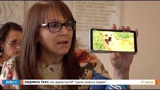 НикВести: Драка из-за бездомных собак в горсовете Николаева: как это было