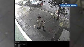 Surveillance: Presumed MAGA supporter vandalizes SF home