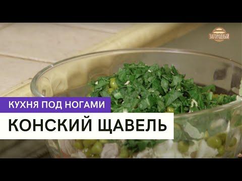 Конский щавель \ Кухня под ногами