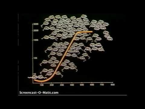 Universe 25- John Calhoun's NIMH experiment