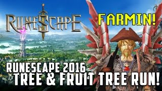 Runescape 3 : 2016 Tree and Fruit tree farming run!