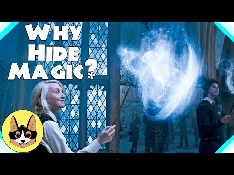 Harry Potter Theory - Why Hide Magic?