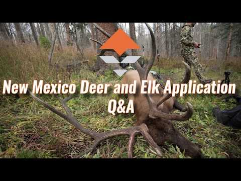 New Mexico Deer And Elk Application Strategy — Q&A