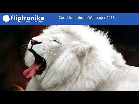 Cool Lion Iphone Wallpaper 2016 Fliptroniks Com