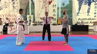 Full contact Karate Fight and a Knockout in 30 Secs Winner is Hamid Zandi