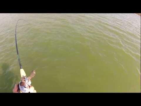 Castaic Lagoon 15 lb Largemouth bass 4-15-2012