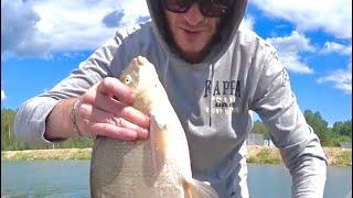 Отличная рыбалка на Белоярке  Бонусные Лещи на фидер