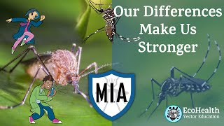 EcoHealth Grade 3: Our Differences Make Us Stronger