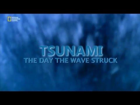 2004 Tsunami Felaketi  (Belgesel)