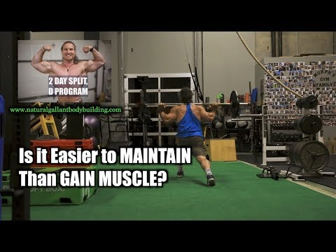 Is it EASIER TO MAINTAIN MUSCLE than GAIN it?