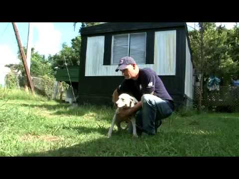IDA's Animal Rescue Team Busts a Suspected Dog Fighter in Mississippi
