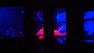 Performance audio-visual: EMILIANO PÉREZZ / EZEQUIEL COLOMBO