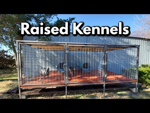 Professional Raised Dog Kennel Build