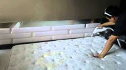 Oscar Bedbugs Pest Control