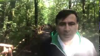 Саакашвили из леса объяснил почему намерен вернуться в Украину