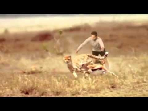 f6df87d7f626 Skechers Man vs Cheetah Commercial TV Advertisement for Go Run 2 Running  Shoes at Super Bowl 2013