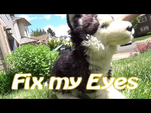 Fix my Eyes Webkinz Music Video