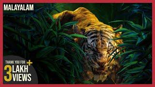 Download Video Pulimurugan Teaser Remix | Jungle Book HD MP3 3GP MP4