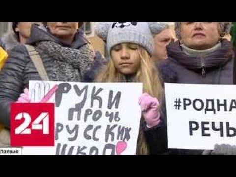 Язык силы: русские школы в Латвии переводят на латышский - Россия 24