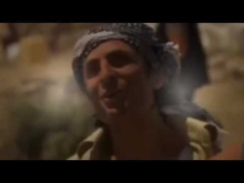 Adventure English Movie - Treasure-Seeking Adventure Action Full Movie