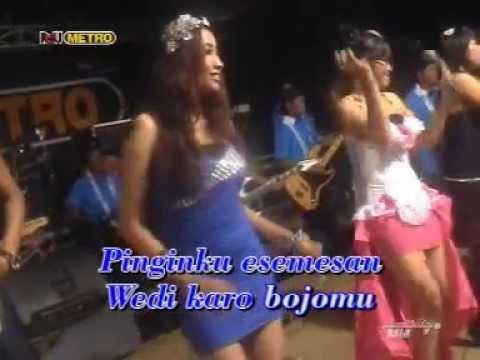 Om New METRO - WEDI KARO BOJOMU - Femina [karaoke]