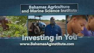 The Bahamas Agricultural Marine Science Institute