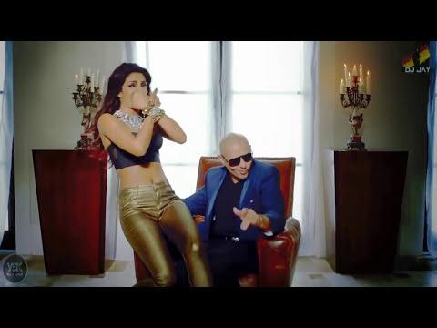 Exotic - Priyanka Chopra ft. Pitbull (Remix) [Jay Patel] YSK Productions